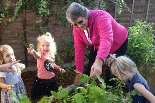 volunteer programme tops day nurseries